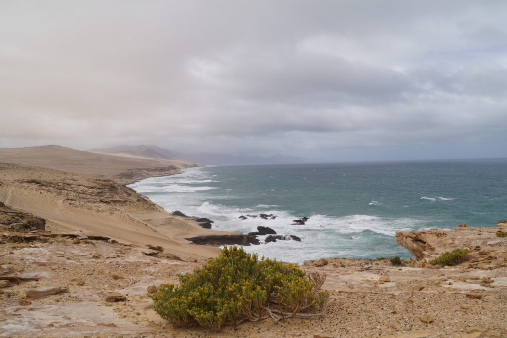 zachodnie wybrzeże Costa Calma