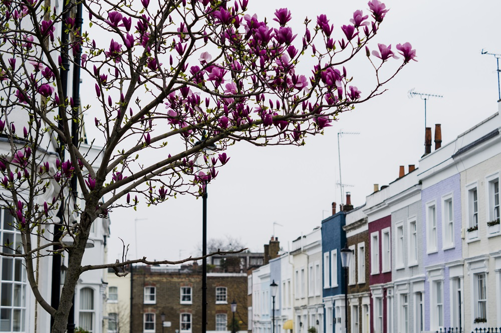Notting Hill Londyn